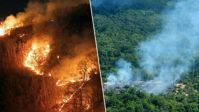 Emmanuel Macron will block EU trade deal with Brazil over Amazon forest fires